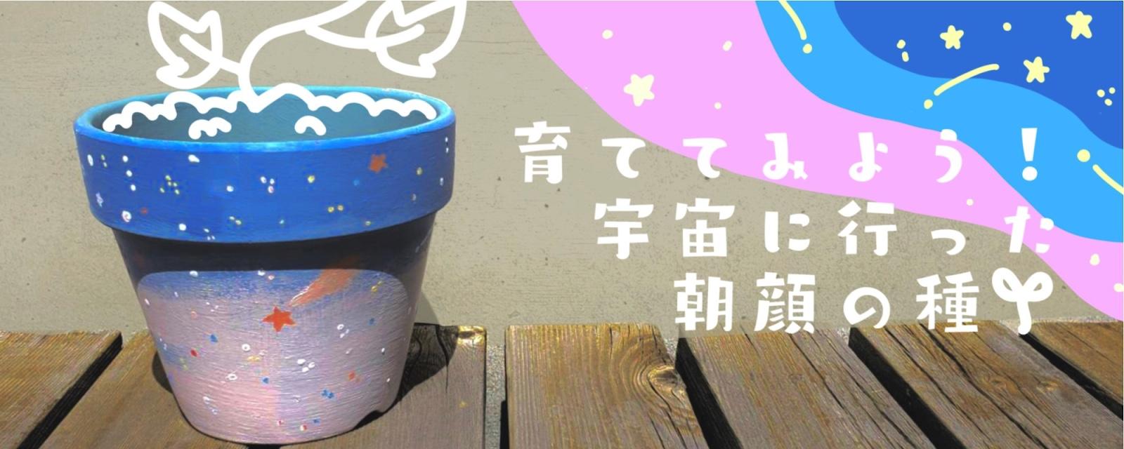 """宇宙""""アサガオ""""イベント@湘南教室!"""